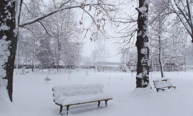 Zăpada – urgia albă