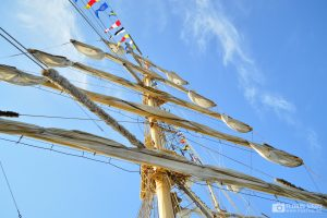 regata-marilor-veliere-2016-11