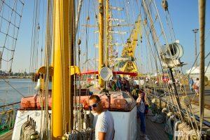regata-marilor-veliere-2016-8